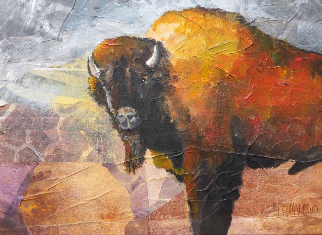 Preservation-Series-American-Bison